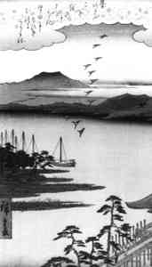 geese over Lake Biwa