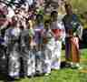 May 4, 2003,  Sakura Matsuri festival in White Plains NY